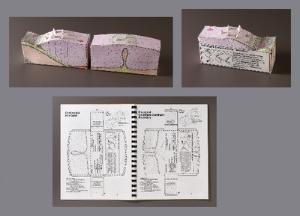 Geoblox Plate Tectonics Models
