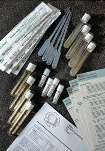 Ward's® Pigmented Bacteria Set