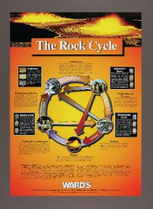 WARD'S Rock Cycle Poster