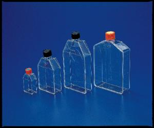 Corning® Polystyrene Tissue Culture Flasks, Sterile