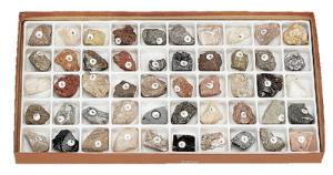 Classroom Collection of Minerals and Rocks