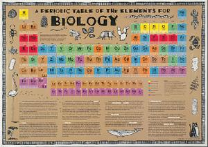 Biology Periodic Table of Elements