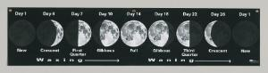 Lunar Cycle Banner