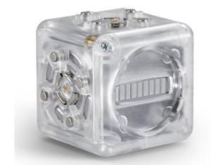 Individual Cubelets