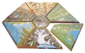 Terrain Models