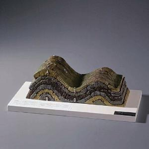 Normal Anticline and Syncline Model
