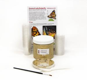 470227-450 – Large butterfly kit with premixed food