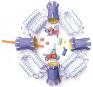 Model kit cell nucleus
