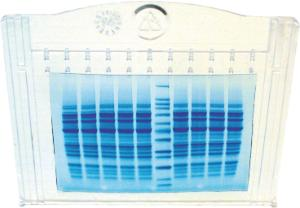 nUView™ Tris-Glycine Precast Gels, NuSep®