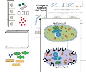 Science Take-Out® Cell Communication