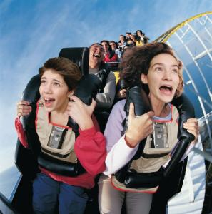 Amusement Park Physics