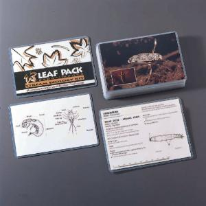 Leaf Pack Macroinvertebrate Flash Cards