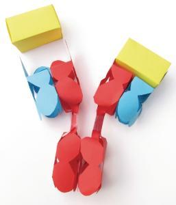 Model kit antibodies