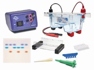 Demonstration DNA Electrophoresis LabStation