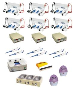 Advanced DNA Electrophoresis LabStation