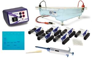 Classroom DNA Electrophoresis LabStation PLUS
