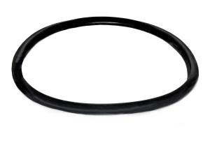 Replacement saniclave door gasket