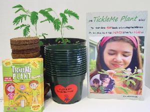 Tickleme Plants