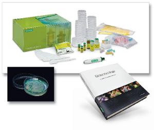 Bio-Rad® Introductory Bundle 1: Curriculum Textbook and pGLO Bacterial Transformation Kit