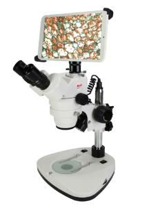 Zoom Stereomicroscope with Digital Screen