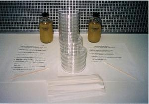 Bacteria Experiment Kit