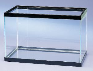 All Glass Aquaria