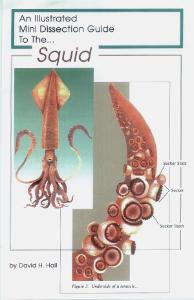 Illustrated Dissection Guides