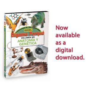 Tell Me Why: Anatomy & Genetics - Spanish