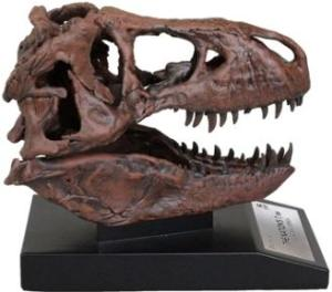 T-REX skull 1/10th scale replica
