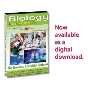 Nervous & Skeletal Systems