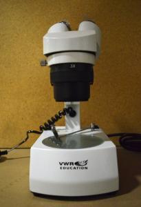 Stereo Microscope, 1X, 3X