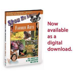 Show Me Science: Biology–Farmer Ants Video
