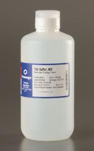 40X TAE Electrophoresis Buffer