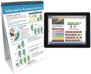 Flipchart with Multimedia Lesson:Genetics