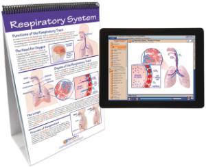 Flipchart with Multimedia Lesson:Humbody 2