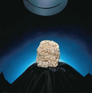 Limestone (Coquina)
