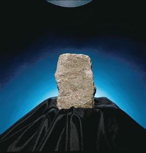 Ward's® Limestone (Encrinal)