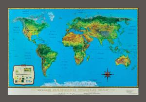 Wide-Ranging World Map