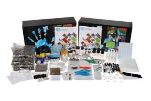 Blood Spatter Detectives Kit