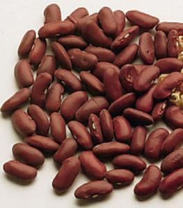 Viable Bean Seeds
