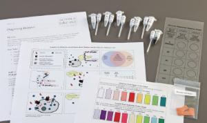 Science Take-Out® Diagnosing Diabetes