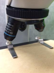 Leica Microscope, Compound Student, 4x/10x/40x
