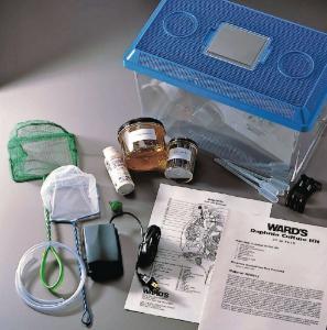 Ward's® Daphnia Culturing Kit
