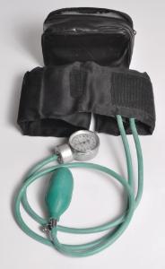 Student Blood Pressure Gauge