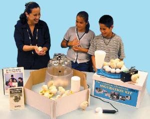 Complete Classroom Incubation Kit