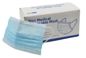 Disposable adult mask