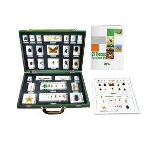 27-Piece Invertebrate Embedment Set