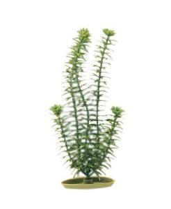 Marina® Artificial Plants