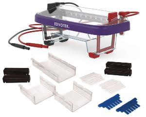 EDVOTEK Dual Gel Electrophoresis Apparatus