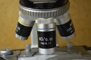 Microscope, Student Cordless 100x